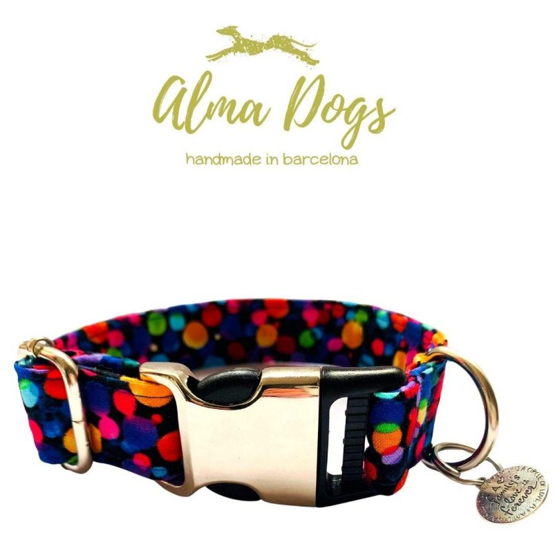 collar para perros lluvia de color